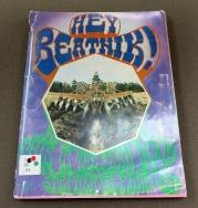 hey_beatnik