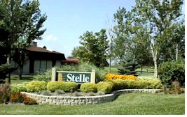 Stelle subdivision entrance sign, n.d. Credit: https://en.wikipedia.org/wiki/Stelle,_Illinois