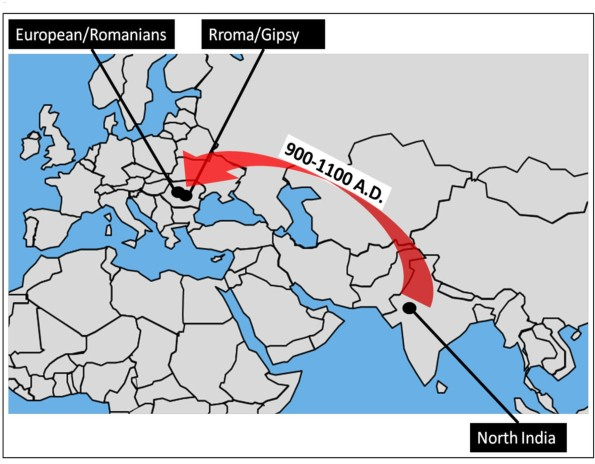 This map shows the migration of Roma people from northwest India to Europe. Credit: PNAS and https://www.livescience.com/44512-gypsy-culture.html