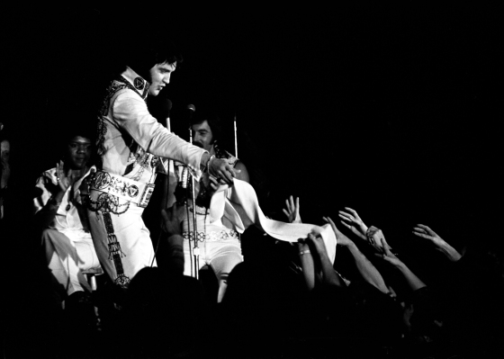 Elvis Presley in concert on October 24, 1976 at Roberts Municipal Stadium. Source: Gregory Smith collection, MSS 034-0739.