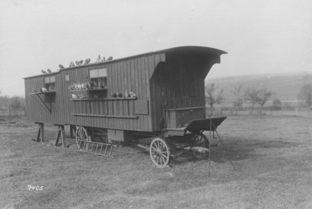 Photograph of a mobile station that was used to house pigeons when they were deployed away from their home. (National Archives Identifier17391470) Source: https://tinyurl.com/y7nf5pam