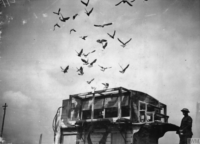 London double-decker bus converted for use as a mobile loft for carrier-pigeons, 1918. (British) Ministry of Information First, World War Official Collection; photograph by 2nd Lt. David McLellanSource: https://tinyurl.com/sulepck