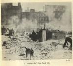 Hooverville, New York City.               Source: Leuchtenburg, William E. Franklin D. Roosevelt and the New Deal, 1932-1940.